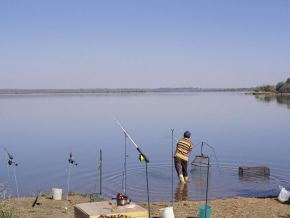 vaalkop Dam offers a variety of fish species